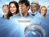 Dolphin tale movie review