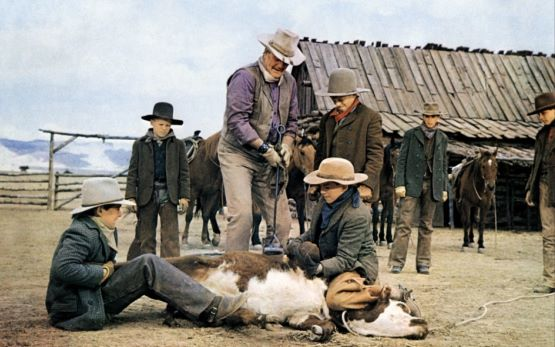Scene from The Cowboys( 1972)