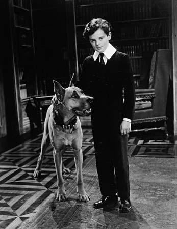 Freddie Bartholomew as Little Lord Fauntleroy