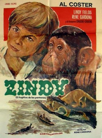 Zindy the Swamp Boy poster