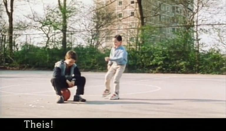 Theis and Nico (1999)