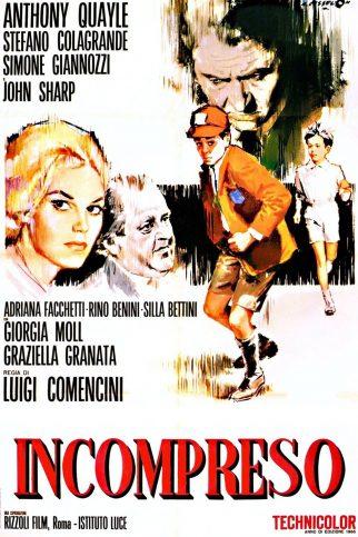 "Poster for the movie ""Misunderstood"""