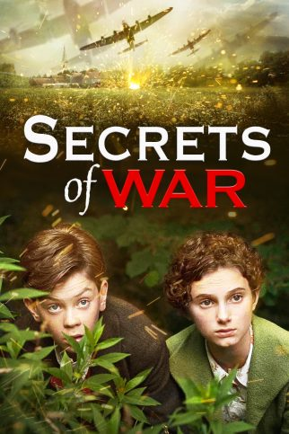 "Poster for the movie ""Secrets of War"""